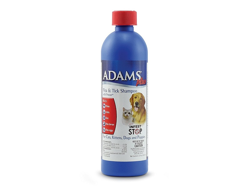 The Best Flea Shampoo For Dogs