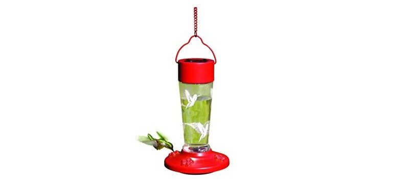 Songbird Essentials Solar Powered Hummingbird Feeder
