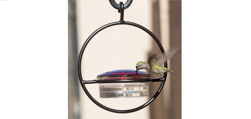 We love hummingbirds metal feeder