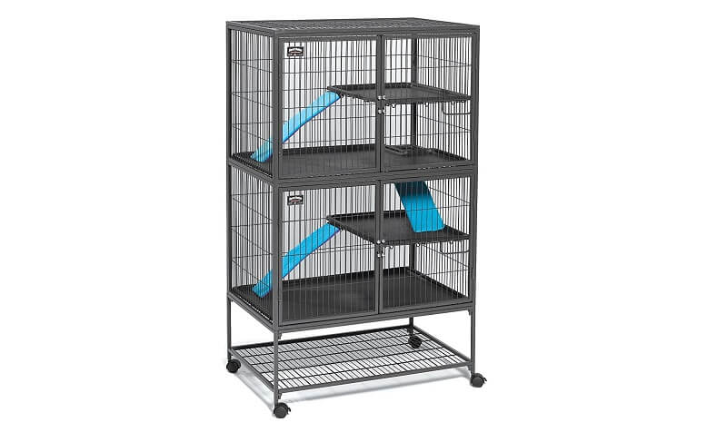 Top 6 Best Rat Cages + A Guide On Choosing The Best Cage