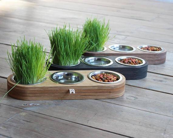 Modern cat bowls