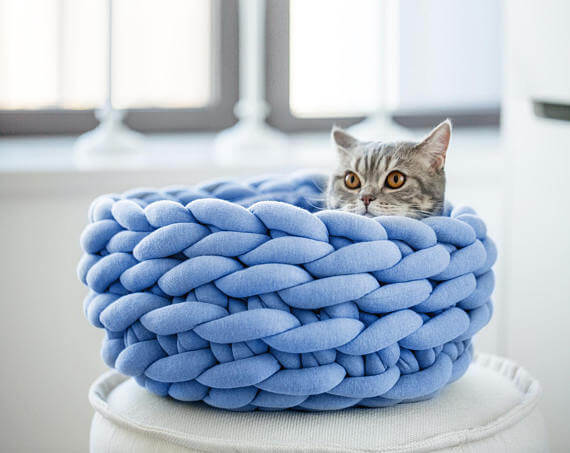Ohhio cat bed as gift