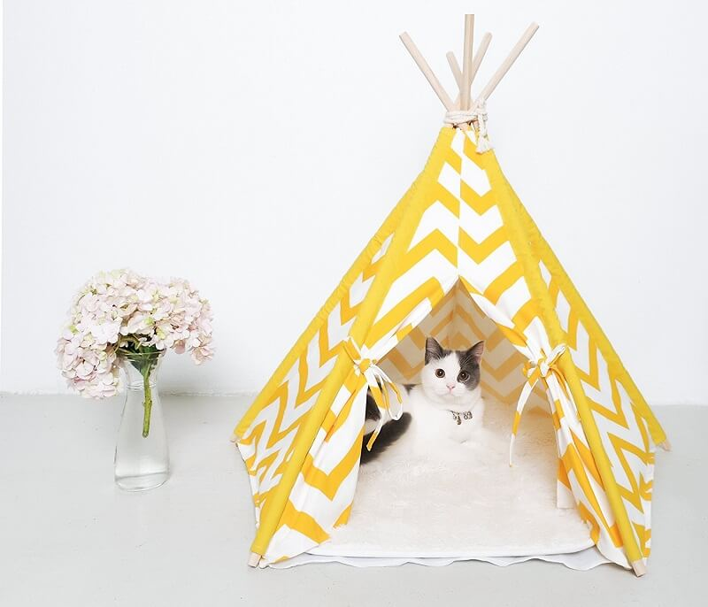 Cat teepee as a gift