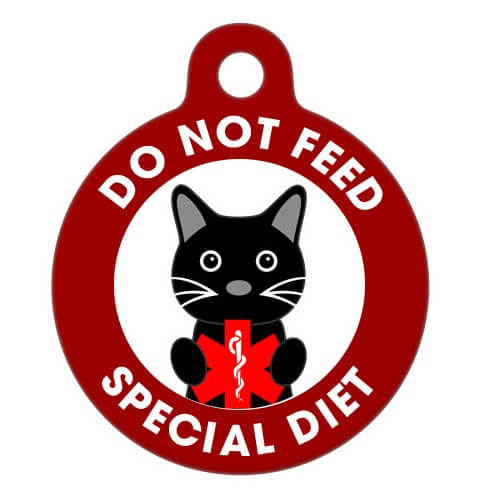 Stop Feeding Cat Collar