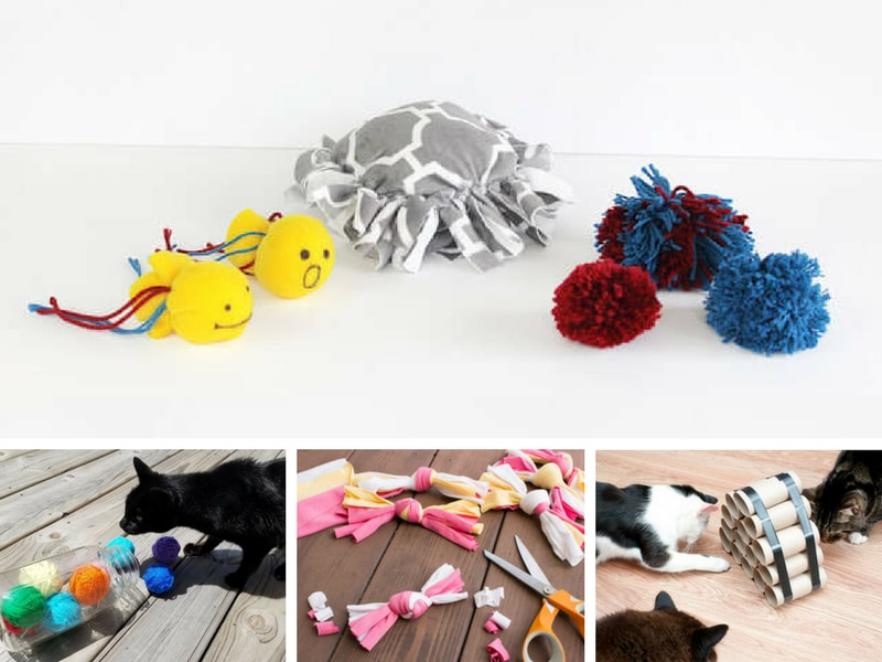 How To Make Cat Toys Out Of Household Items