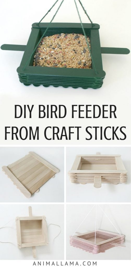 How to make a DIY bird feeder