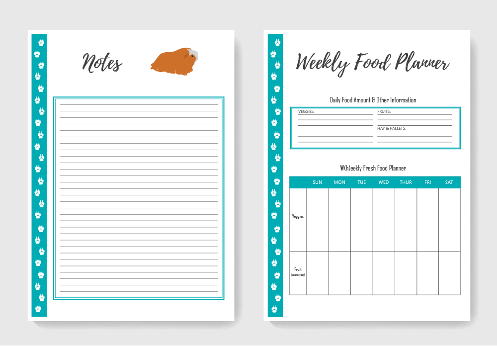 Guinea Pig Food Planner, Care Sheets and More