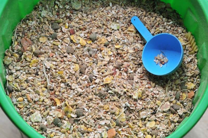 Dry mix food for mice